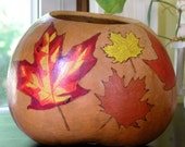 Carved and Painted Natural Gourds for Fall