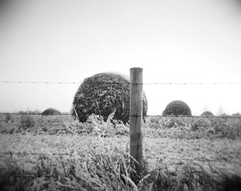 hay bale photo, farm photo, photography print, black and white, decor, holga, hay photo, landscape, frozen, winter, farm, country, ice, snow