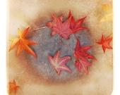 Fall Leaves 8x8 Fine Art Photographic Print