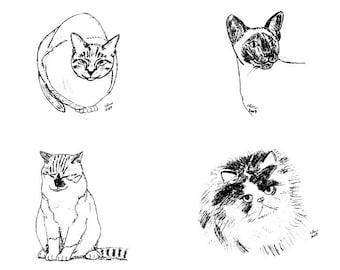 Cat Notecards (1)