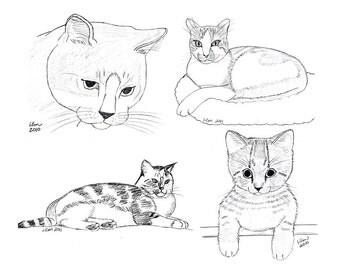 Cat Notecards (2)