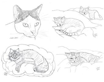 Cat Notecards (3)