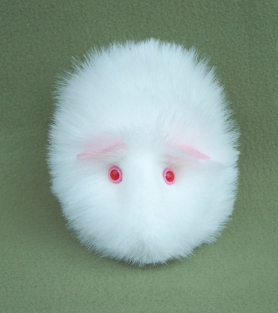 Albino Guinea Pig By FurryThangs On Etsy
