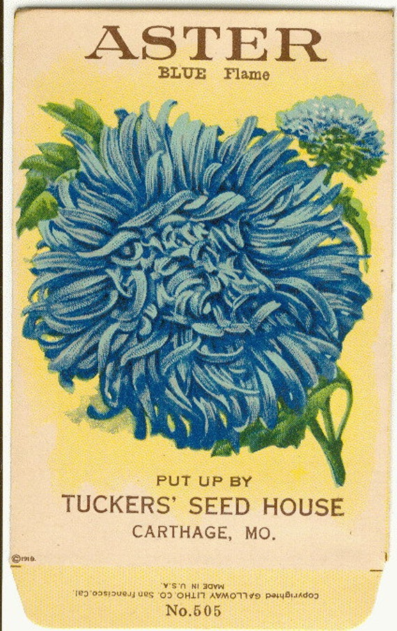 how to read flower seed packets