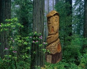 Fairy House Hand Carved Cedar - Magical
