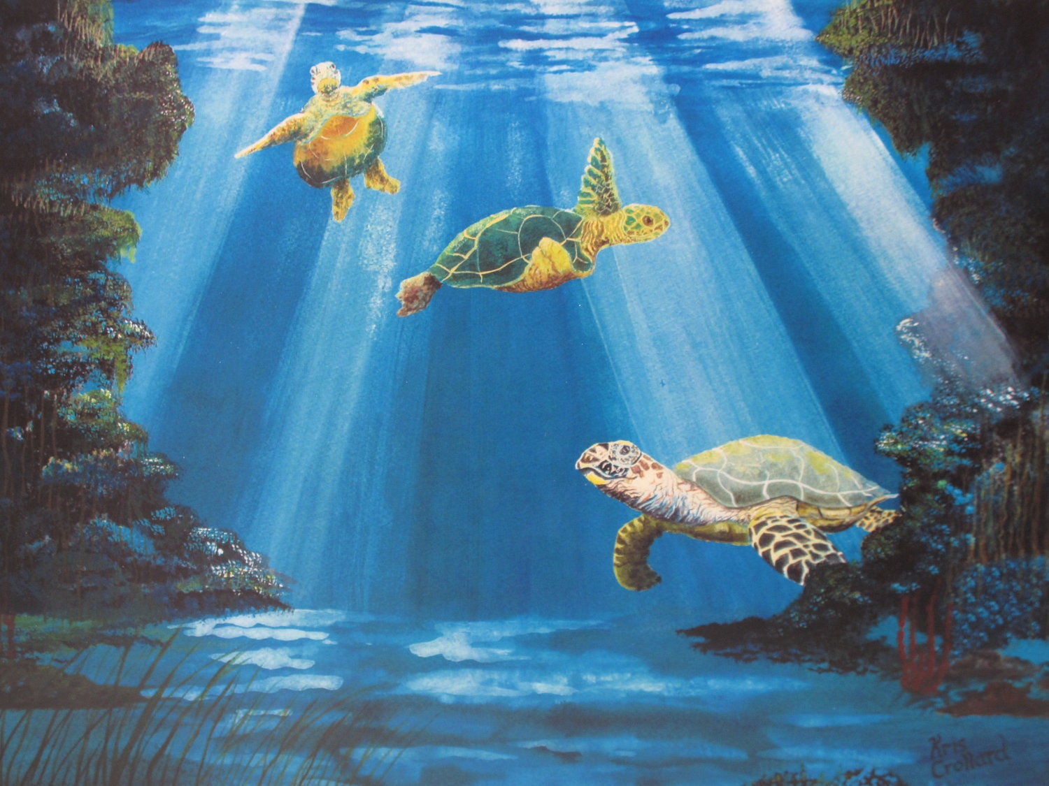 Turtle Print 12x9 In 16x12 Mat Underwater Sea Life Cave