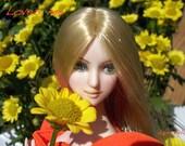 OOAK Obitsu Faceup Custom Doll Venus