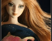 Custom 27cm Obitsu Art Doll