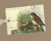 Vintage Style Tags Lovely Nesting Bird