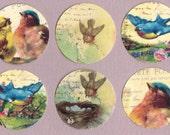 Stickers, Vintage Style, Bird Stickers, Sticker Seals