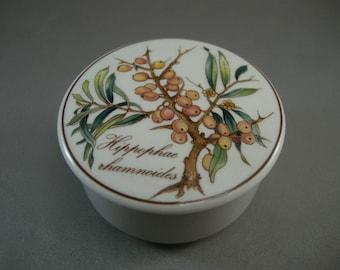 Vintage VILLEROY and BOCH Botanica Lidded Round Porcelain Dresser Box