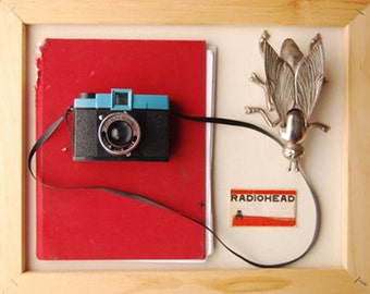 A Collection Fine Art Print--Diana Camera Radiohead Ticket Stub Red Blue White Natural Vintage Camera Journal Home Decor Wholesale