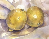 Two Lemons Reproduction Print- Yellow Watercolor -Realistic Still Life- 5x7