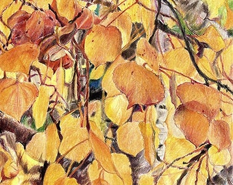 Golden Aspen Leaves Reproduction Print- Autumn Fall Art- Realistic Colored Pencil Drawing- Orange Yellow