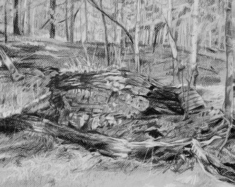Woods Drawing Print- Charcoal Sketch- Realistic Landscape- Slate Grey Art-  Horizontal