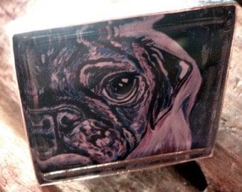 Purple Pug Square dog Art Ring.