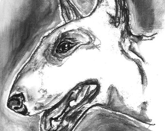 Black and White English Bull Terrier Art , original dog portrait in ink, hand pulled monoprint.