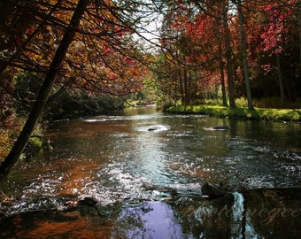 Photography - Fall in the River  -  16x20 Canvas Gallery Wrap - Art
