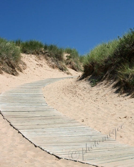 Photography - Path in the Sand Dunes