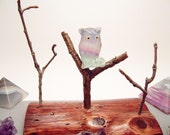 Fluorite Owl Sitting in Tree