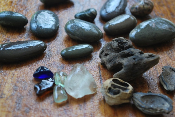 Found Beach Objects - May28 - For Mixed Media Art & Jewelry