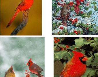 Lot Of 6 Cardinal Bird Fabric Panel Quilt Squares