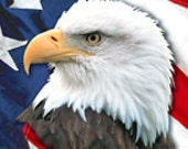 US Flag and Eagle Bookmark