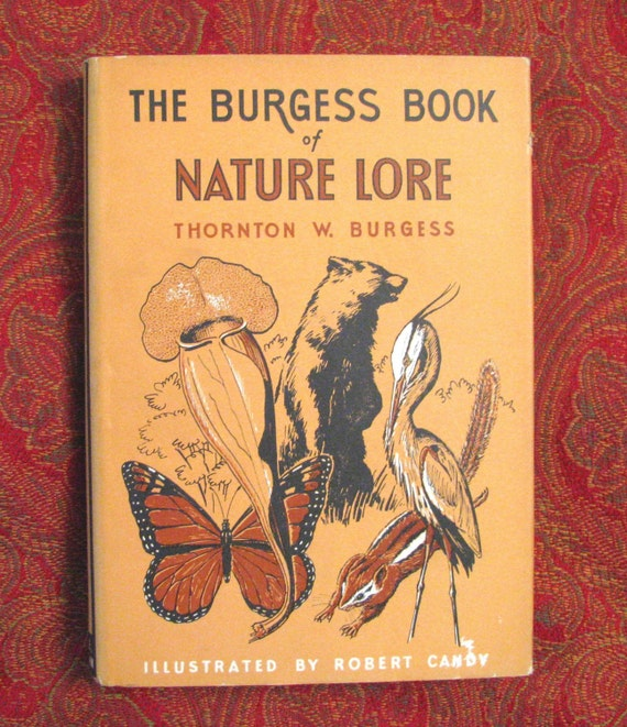 Thornton W. Burgess Nature Book, 1st Edition, REDUCED