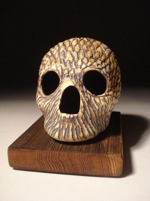 Feather Head Skull