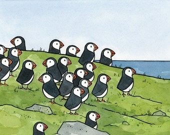Puffin Colony Art Print 8x10