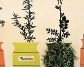 dried organic Rosemary Leaf spanish 1/4 pound 4 ounces