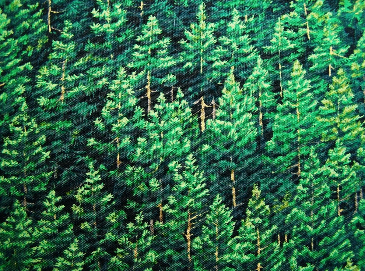 Fabric Evergreen Pine Trees Mountain Forest 1 2 Yd Half Yard