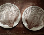 Vintage Shell Plates Retro Seashell Design