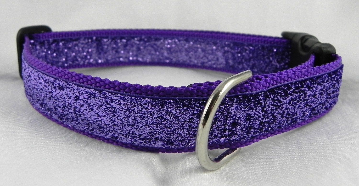 How To Make An E Collar For A Dog