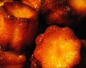 Traditional French Canneles- Minis