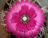 Fabulous Flower Accented with Curly Ostrich Puff