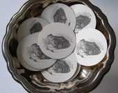 Frog Tags Round Gift Tags Set of 10