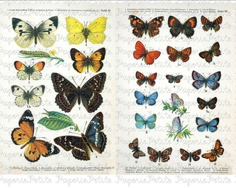Butterfly Digital Download Collage Sheet B
