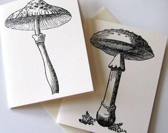 Set of 10 Mushroom Notecards