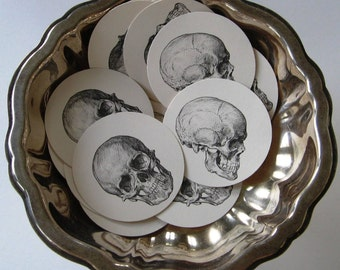 Skull Tags Round Paper Gift Tags Set of 10