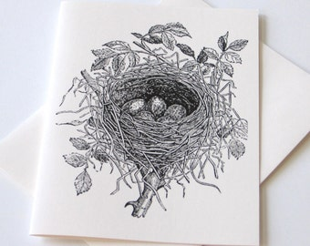 Bird Nest Note Cards - Set of 10
