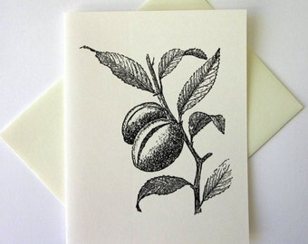 Almond Plant Note Cards Stationery Set of 10 Cards