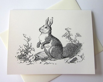 Rabbit Bunny Note Cards Stationery Set of 10 Cards