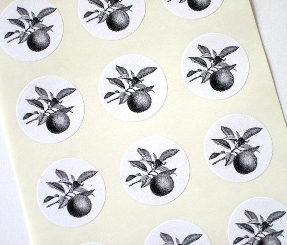 Orange Fruit Stickers One Inch Round Seals