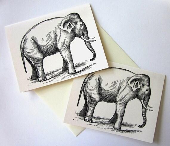 Elephant Note Cards Stationery Set of 10 Cards