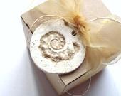 4 Starfish Seashell Beach Theme Wedding Gift Favor Tags Custom Made - Polymer Clay Circle Hang Tag - Cottage White / Tan