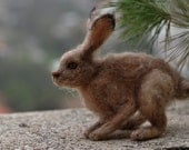 Needle felted Jackrabbit-OOAK Collectible artist wool soft sculpture by Daria Lvovsky