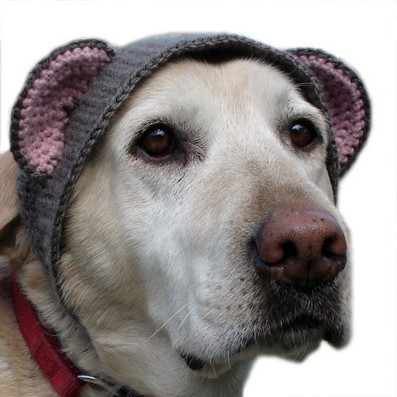 pet hat - large bear