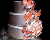 Edible Butterfly Cake Decoration - Assorted Orange - Edible Butterfly Cupcake Topper
