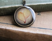 Pressed Leaf Necklace Botanical Jewelry Pressed Barberry Plant Leaves Resin Fall Foliage Antique Brass Chain